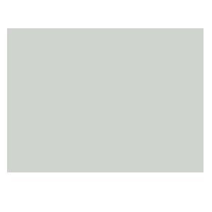 BuckCommander_Logo-gray.png