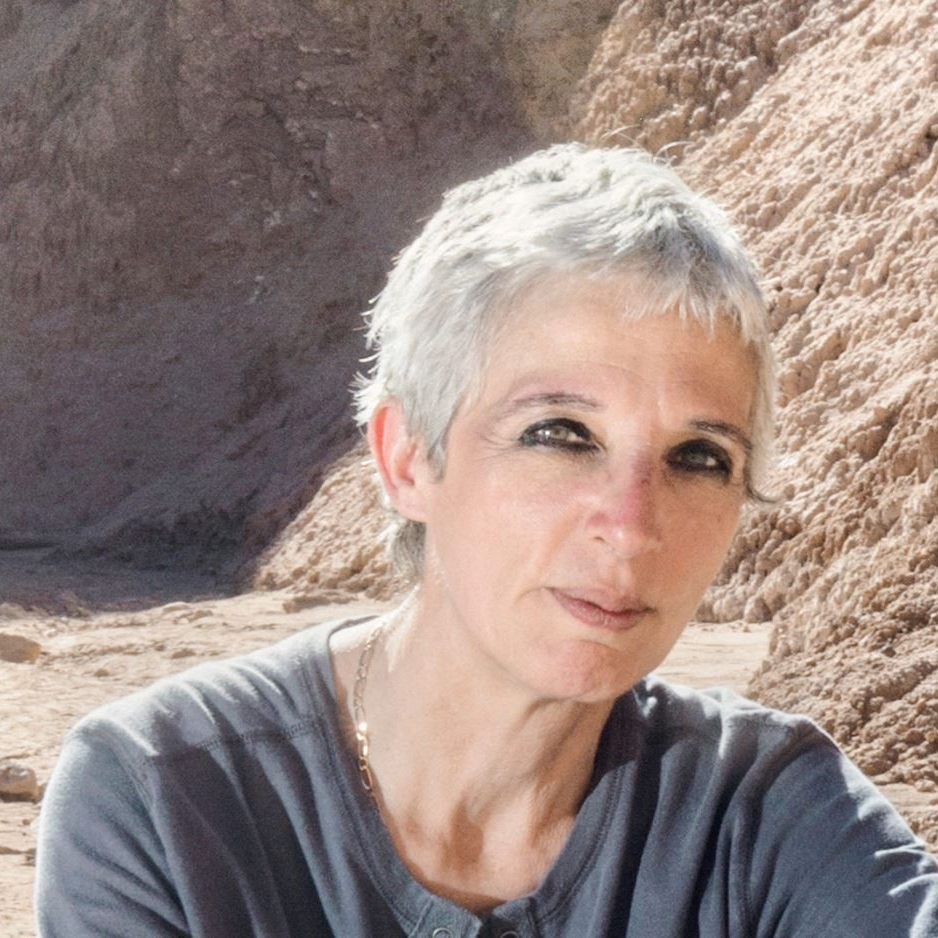 Nathalie A. Cabrol - Director of the Carl Sagan Center for Research at the SETI Institute