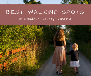 BEST WALKING SPOTS in Loudoun County
