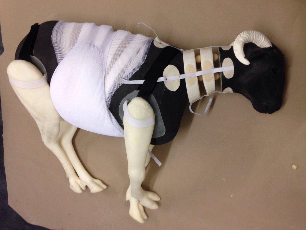 Sheep puppet body- Puppet design
