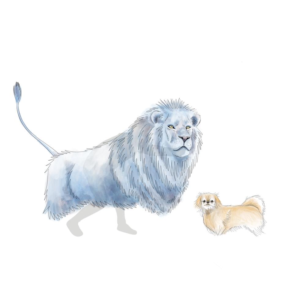 Lion puppet design