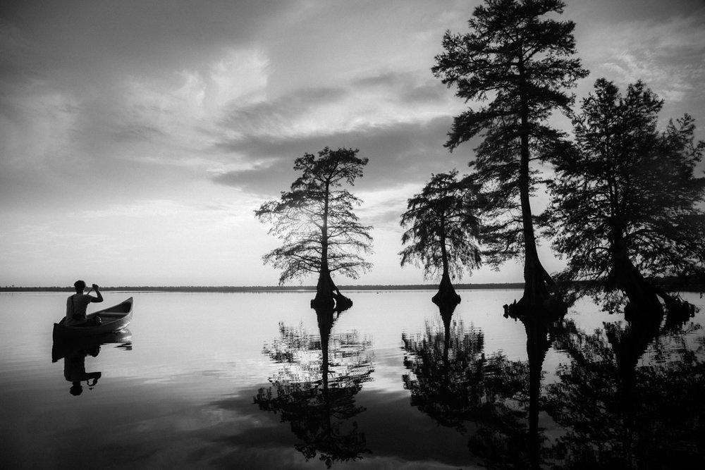 Dismal Swamp2.jpg