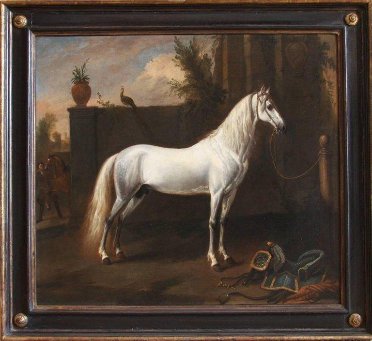 Jan Wyck:  The Grey Arabian (Undated)