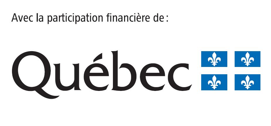 Logo Emploi Québec novembre 2017.png