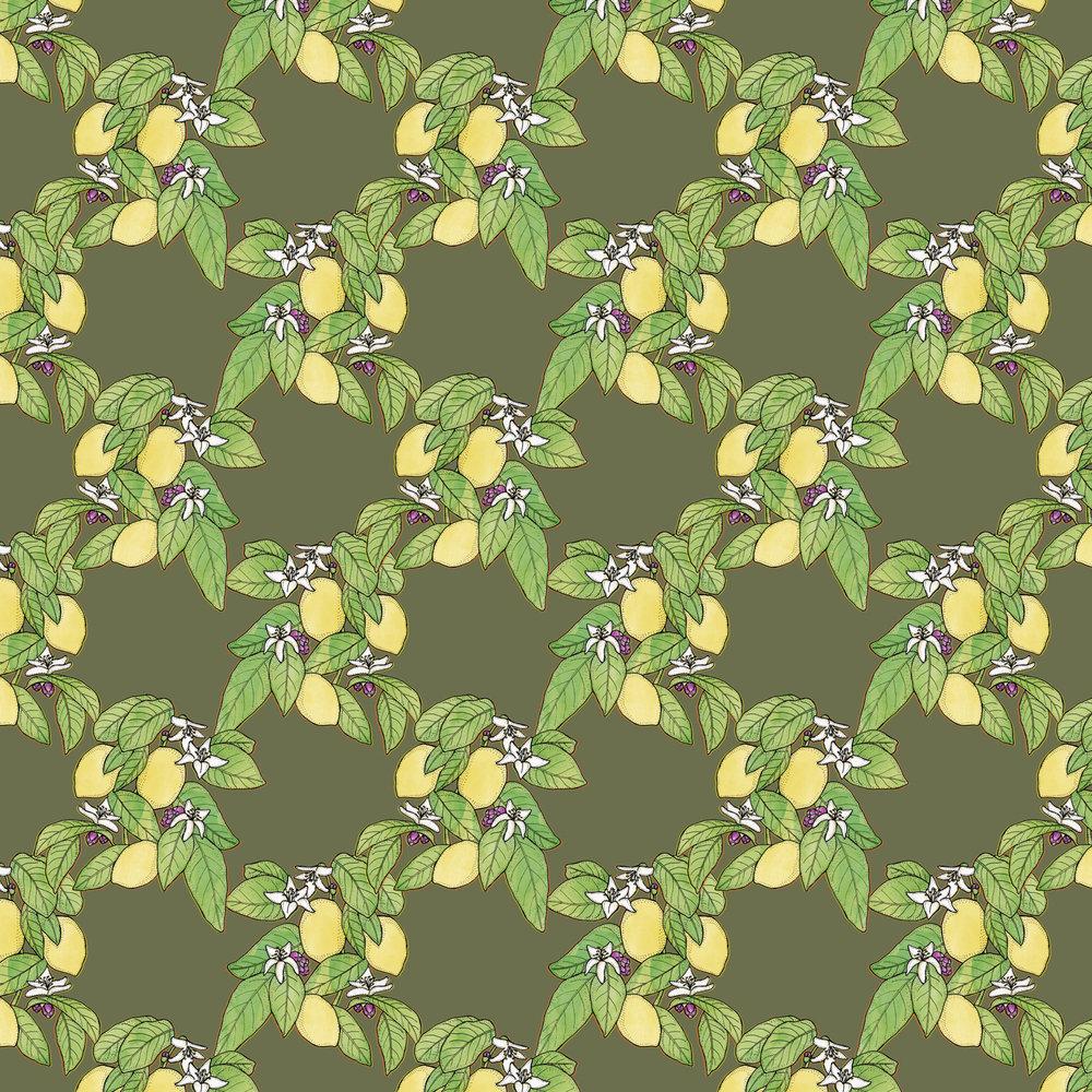 Lemon-Plant.jpg