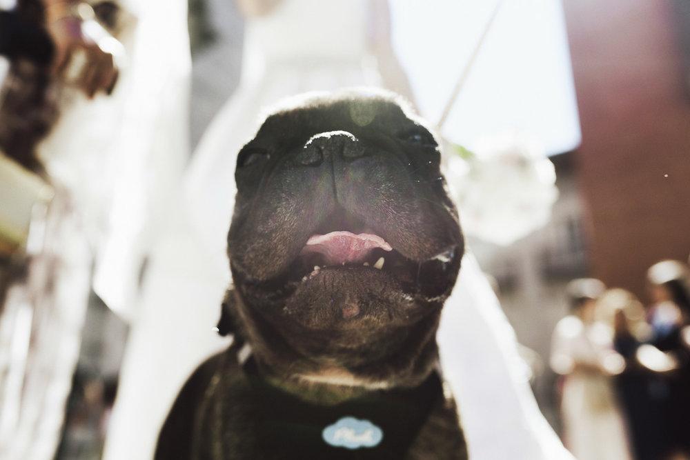 57 fotógrafo de bodas guipuzcoa gipuzkoa destination wedding photographer san sebastian donostia bodas 2017 fotos boda donosti-57