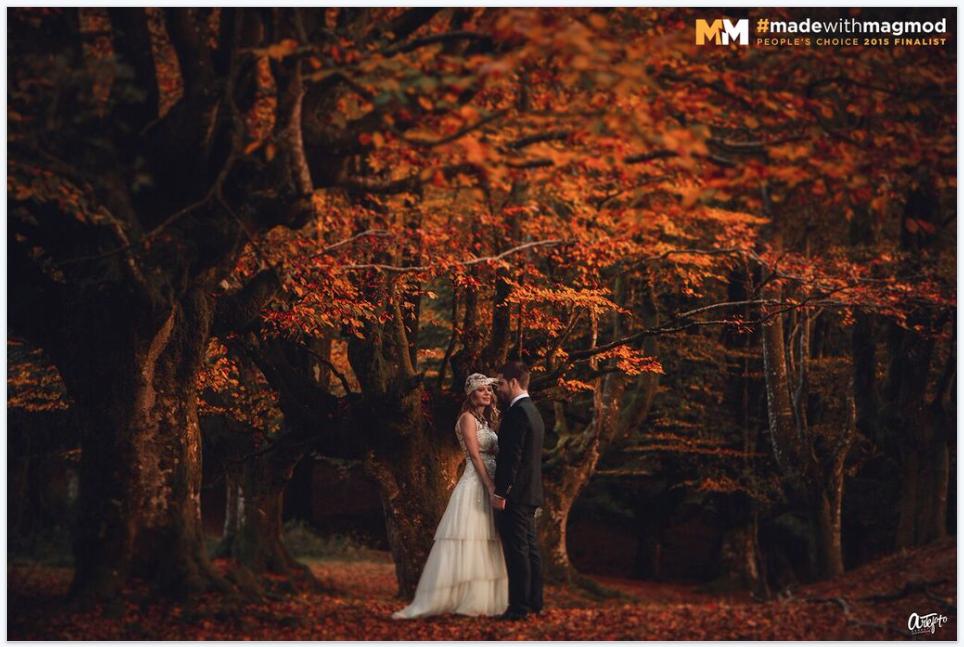 premio fotografo de bodas magmod