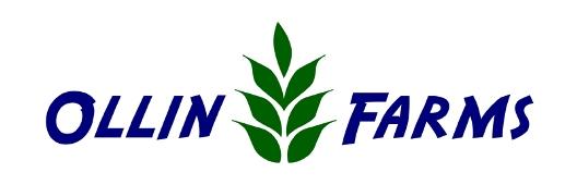 ollin_logo.jpg