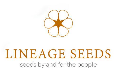 lineage-seeds-495x333.jpg