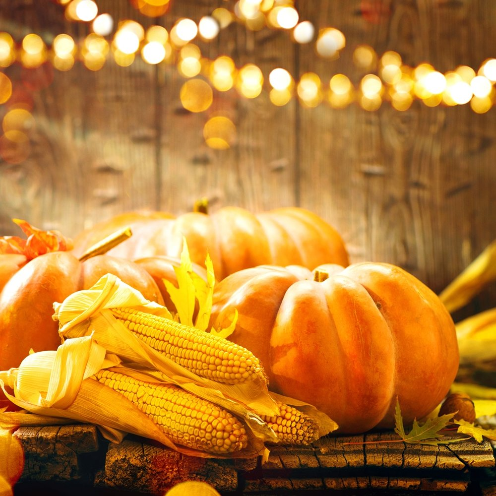 Fall Festival - Every fall, the Leal PTA will host a night of fun games, foods, and crafts for our community in late October. The Leal PTA will setup and sell tickets to play fun games and activities at the Fall Festival as the fundraising effort. In addition, select food vendors invited to the Fall Festival will also donate a portion of their sales to the Leal PTA. Parent volunteers will be needed to help setup and take-turns to operate the games booths.