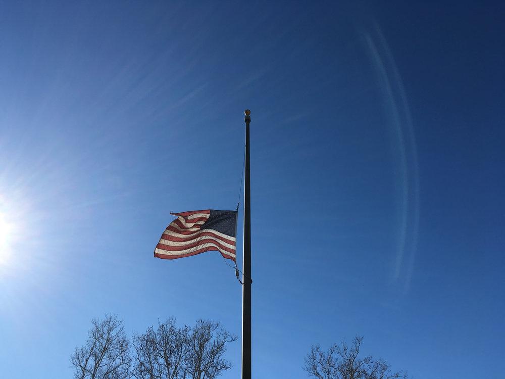 Flag in the Sun.jpg