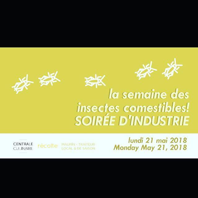 Vous voulez apprendre comme travailler les insects dans votre menu? Curieux? Venir rencontrer de chefs? Une soirée especial @centraleculinaire #chefslife🔪 #mtl #mtlchef #industrymtl #mtllife
