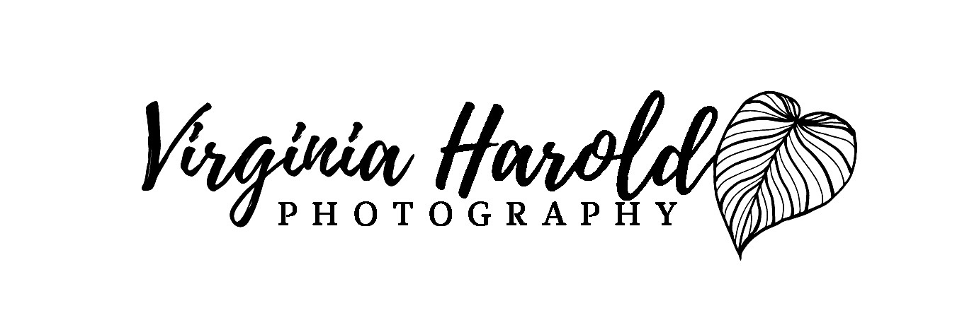 Virginia Harold Photography
