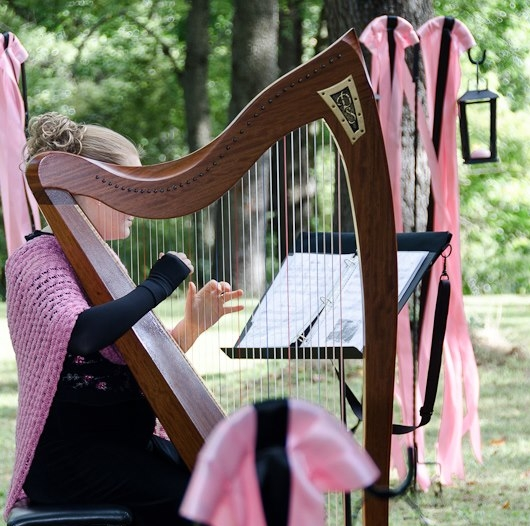 Stephanie playing the harp for Jada and Colby's outdoor wedding ceremony.