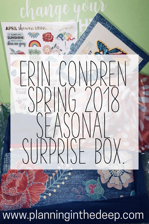 Erin Condren Surprise Box