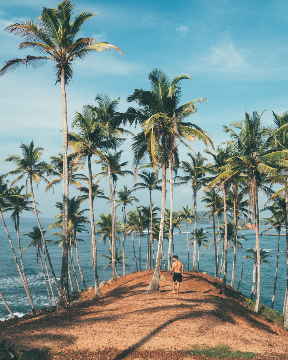 Man standing on the top of a hill surrounded by coconut trees facing the ocean.