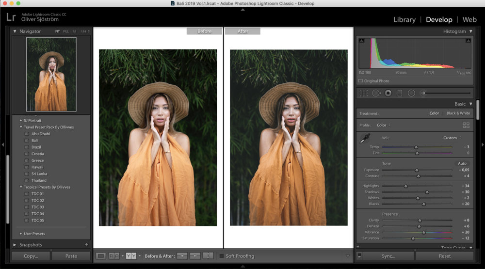 Screenshot of Lightroom photo editing software
