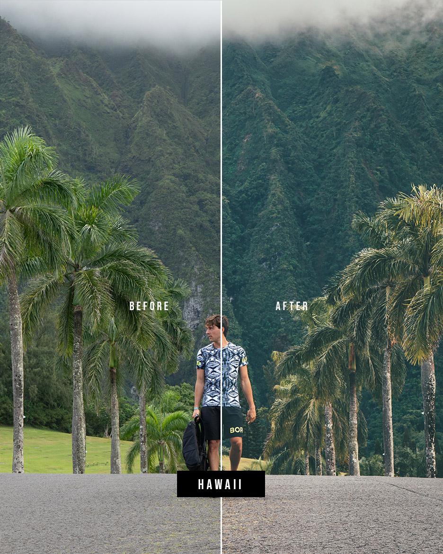 Hawaii b_a web.jpg