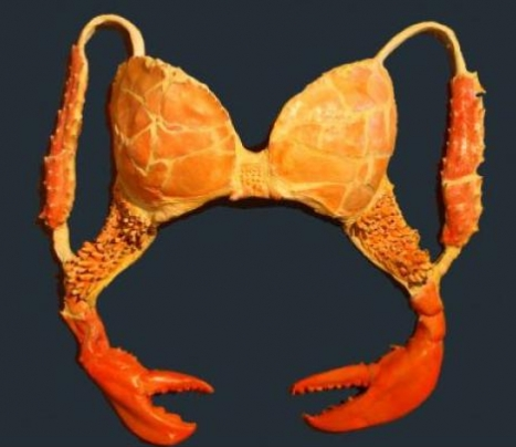 It's a bra, yeah, but like it's also crabs