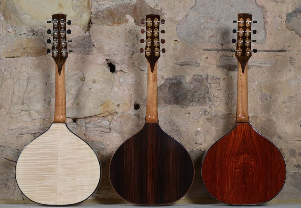(from left to right) Springwell backs - Sycamore, Indian Rosewood, Cocobolo