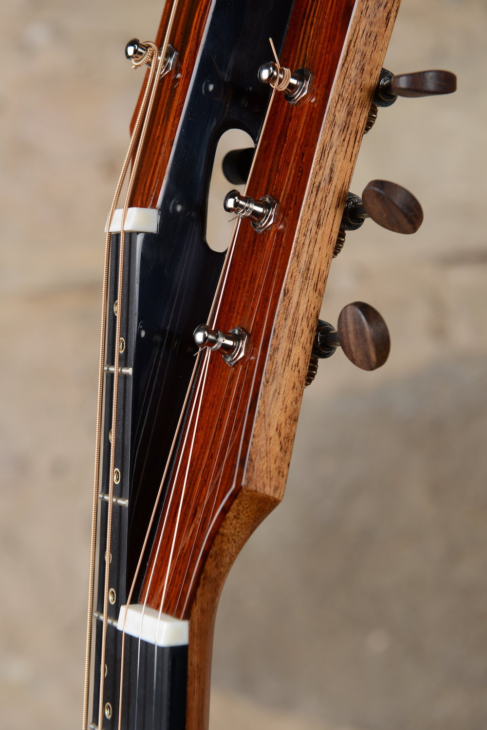 5StringAmerTenor 06.JPG