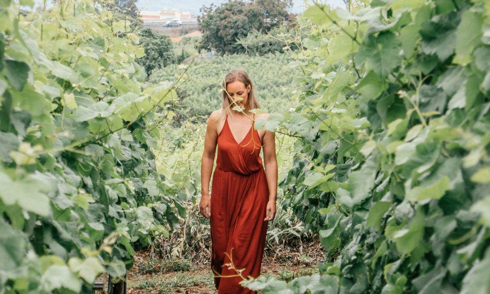 Visit Local Wineries -