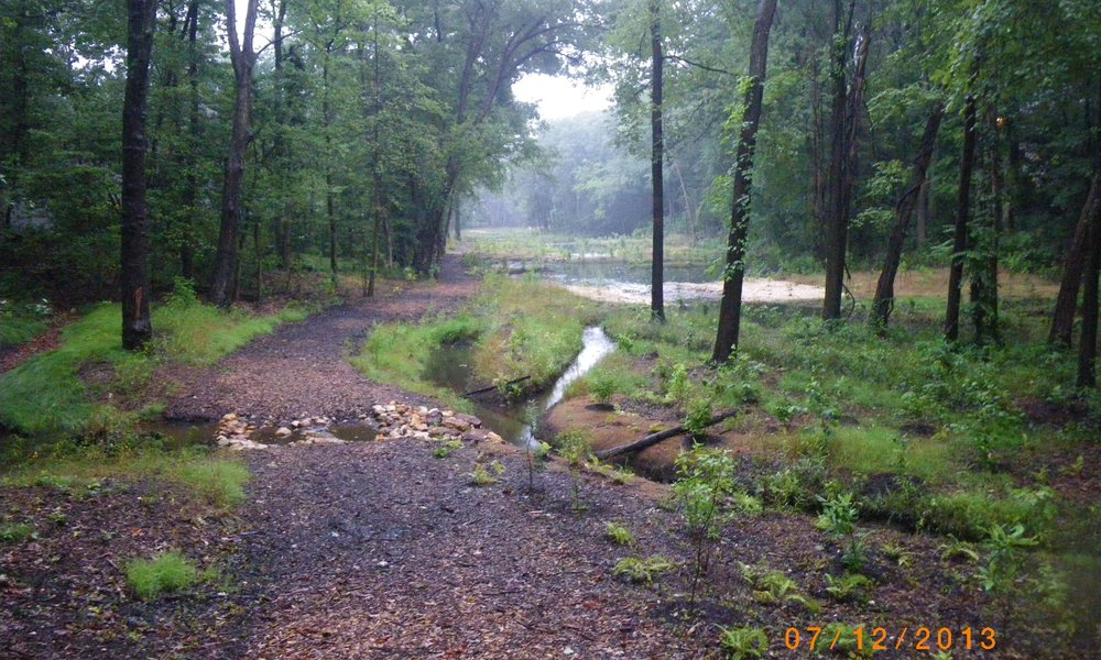 North Branch of Cypress Creek Stream & Ecological Restoration