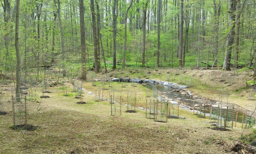 Wheel Creek Watershed Assessment, Stream Restoration & Stormwater Management Retrofits