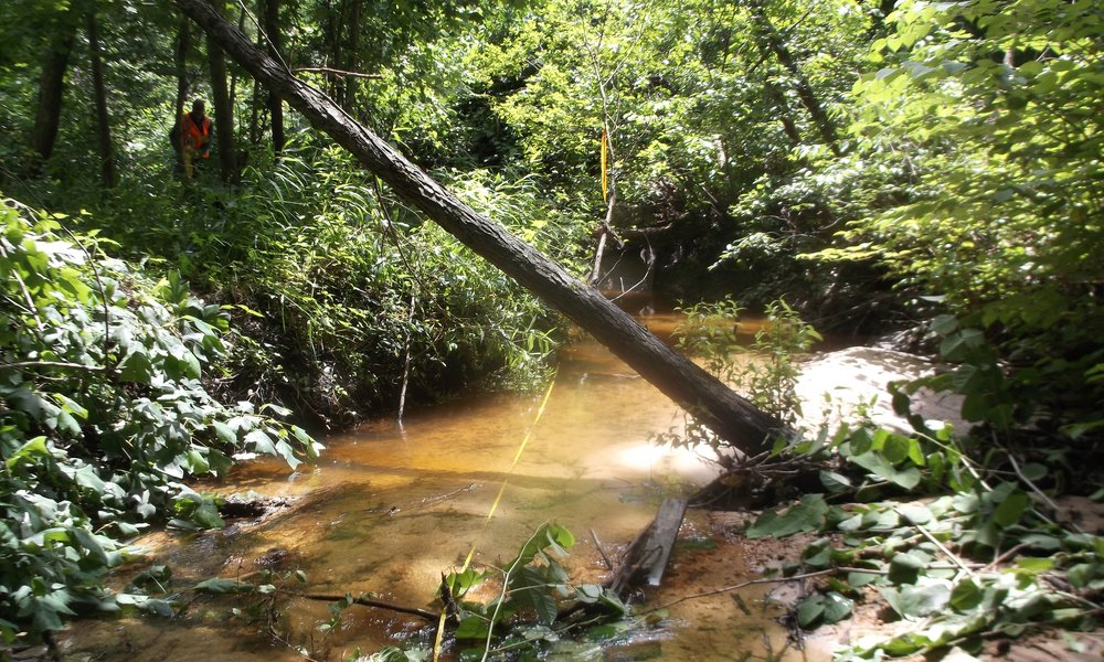 Sawmill Creek Stream & Watershed Assessment