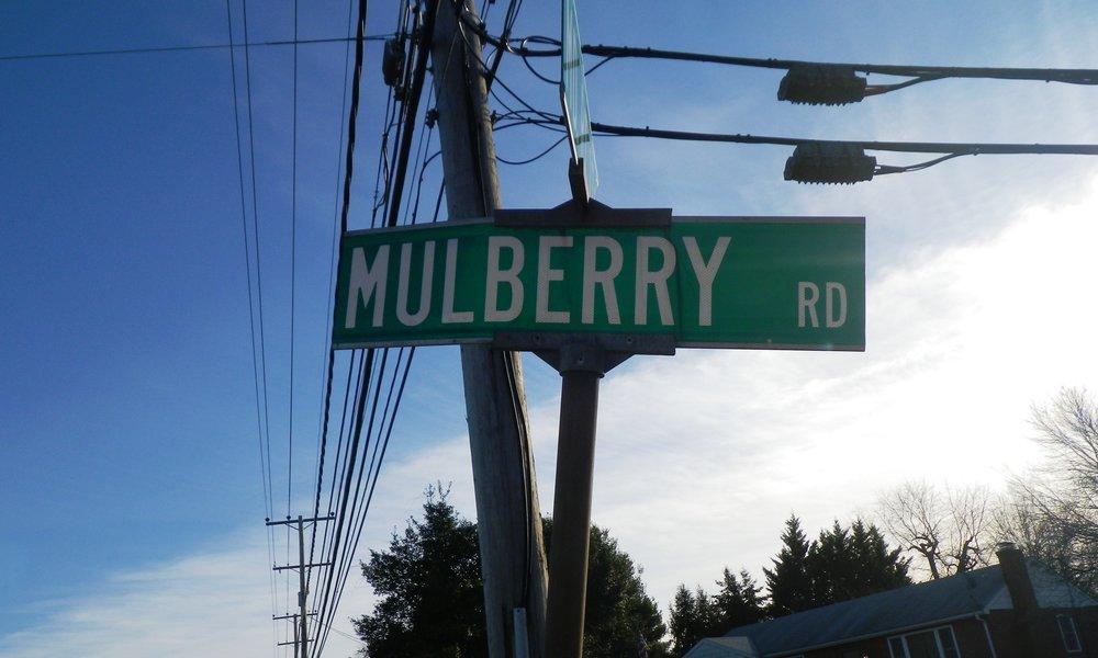 Mulberry Road (4).JPG