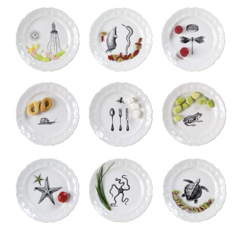 The 16 cm. bread plates come in 9 different designs