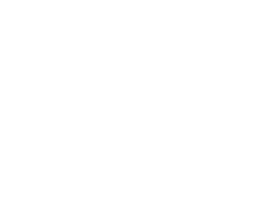 Newton Construction + MANAGEMENT