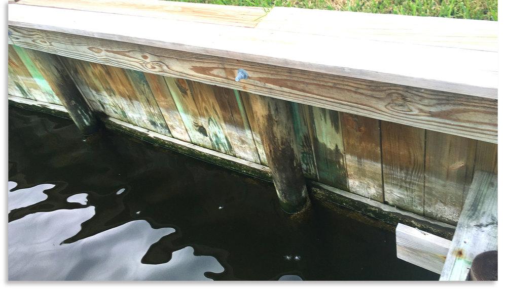 03-seawall-premier-environmental-solutions-florida-seawall-foundations.jpg