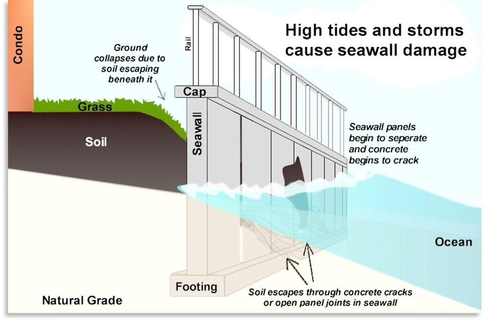 06-seawall-premier-environmental-solutions-florida-seawall-foundations.jpg
