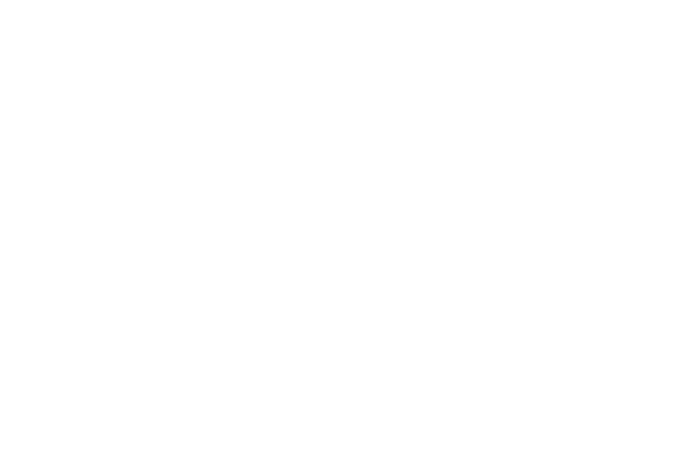 OFFICIAL SELECTION - Shadows of the Mind Film Festival - 2018 (1).png