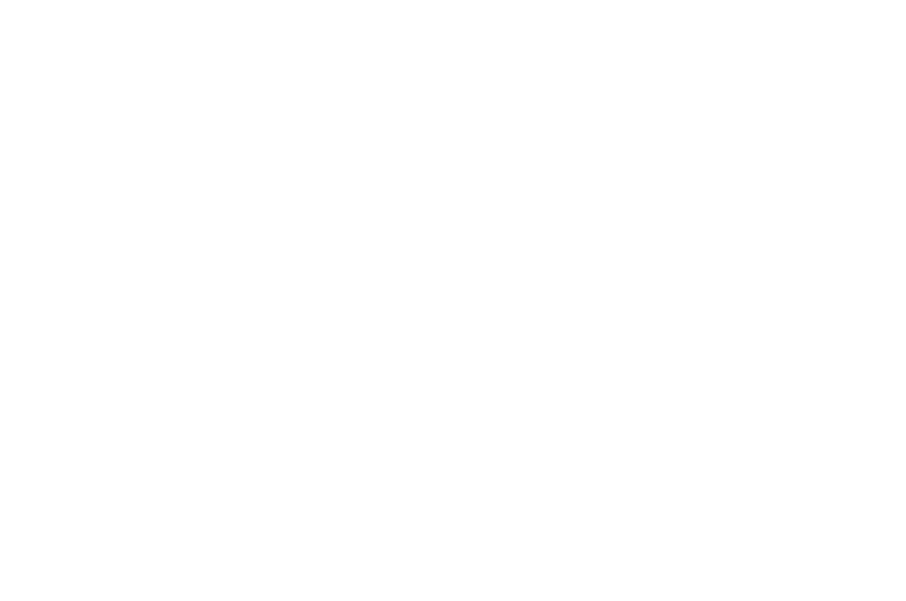 FINALIST - ReelAbilities Film Festival New York - 2018 (1).png