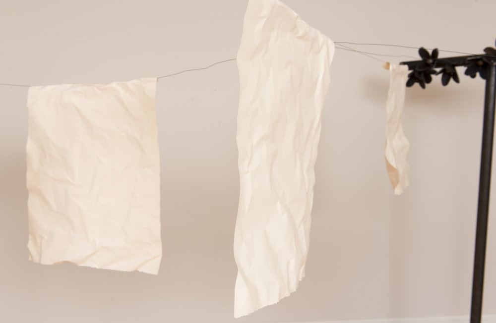 A Clothesline Strung with Tattered Ideals, 2015