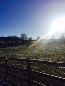 COWSHED MASSAGE AT SOHO FARMHOUSE