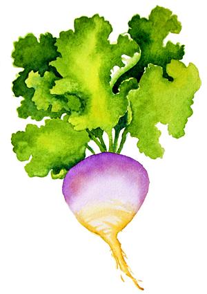 RA veggie.jpg