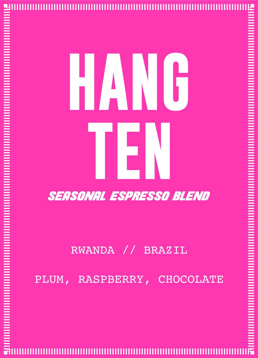 Hang Ten NEW.jpg