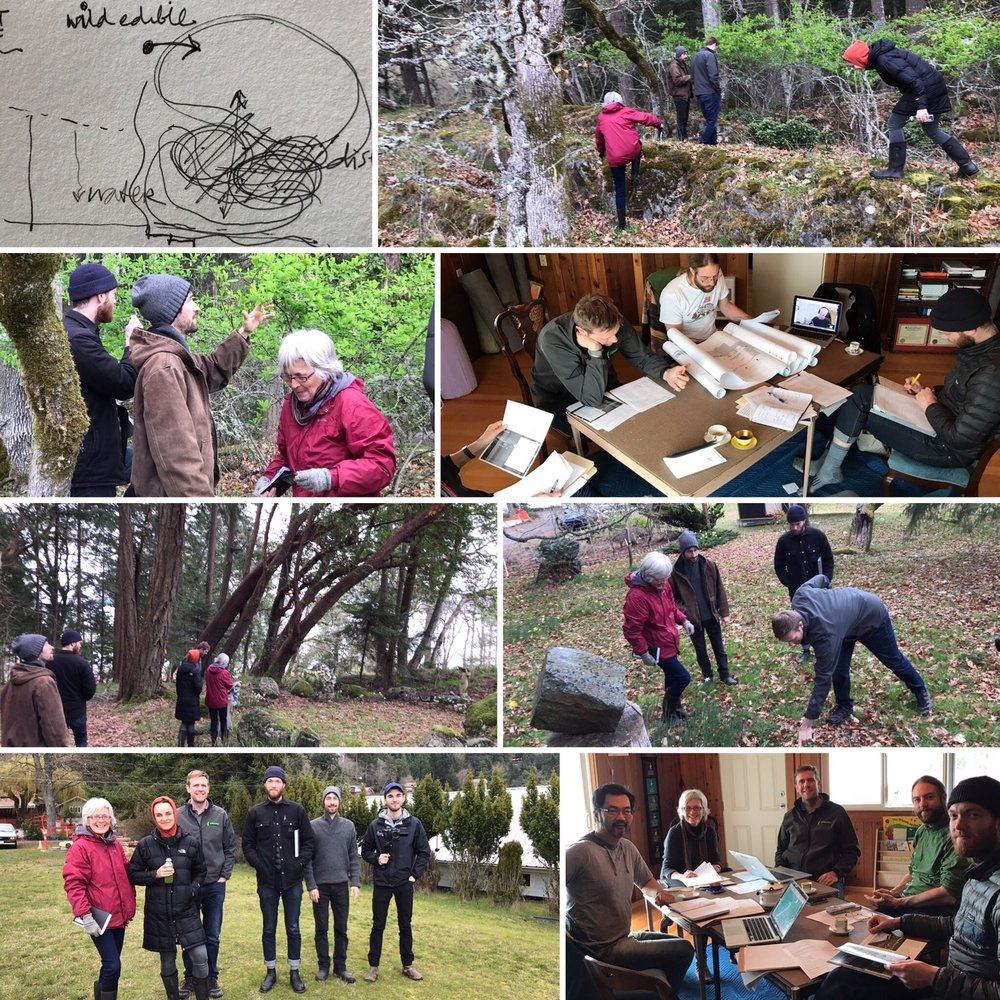 On-Site Biophilia Exploration Day, March 29, 2018, Design Team Members: Victoria Drakeford (Landscape Architect), Kurtis Howes (Lunarbloom Perma-culture), Ross Wood (Design Team Leader), Mark Bernhardt (Bernhardt Contracting), Fiona McLagan, (Co-Founder/Anat Baniel Method Practioner), Hajo Meijer, (CPHD, Special Guest), Kenneth Chooi (C0-Founder, Architect AIBC), Sam Van Hell (Arcas Media), Jack Kitchener (NIDO Design).