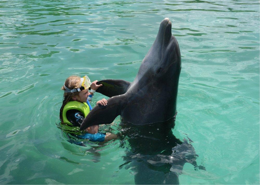 hallie dolphin dance.jpg