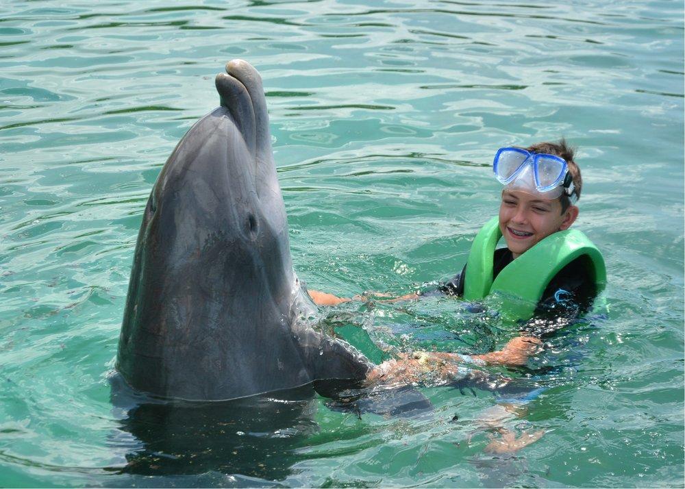 luke dolphin dance.jpg
