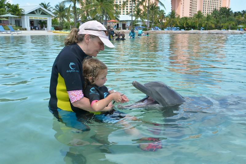 mia feeding dolphin no logo.jpg