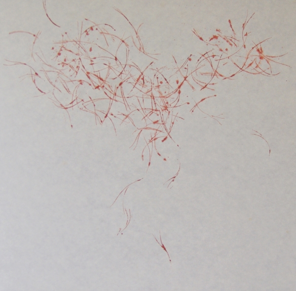 needle trace       mineral pigment, acrylic medium, Japanese paper ( Kozo-shi )   91 x 90   2017
