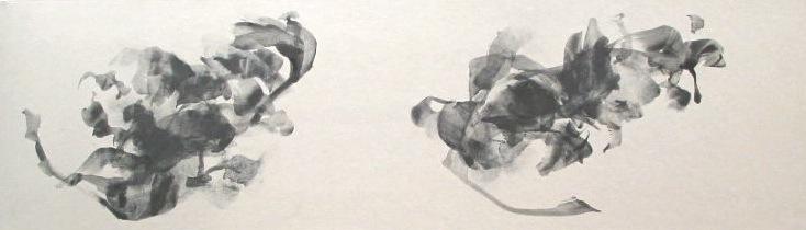 digraph Ⅱ   graphite, acrylic medium on Japanese paper ( Kumohada-mashi )   2004