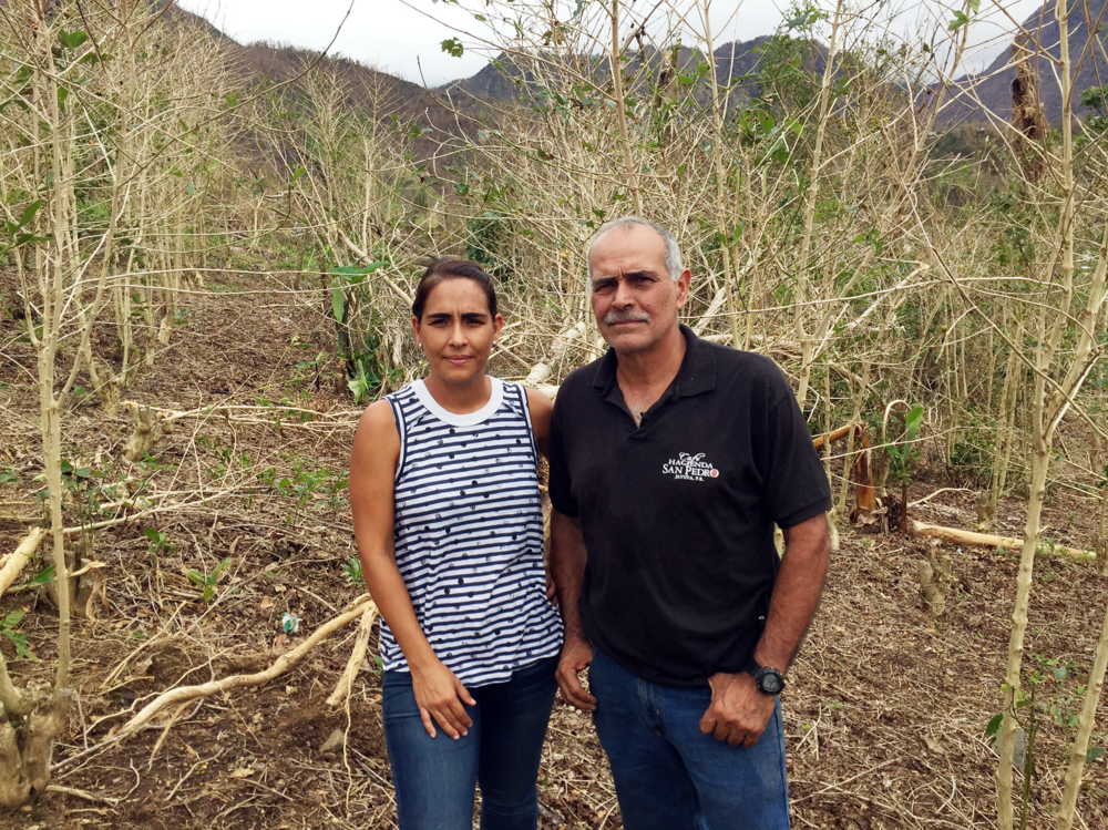 """Help Coffee Farmers - This is a high-impact project run by a local Puerto Rican non-profit. The goal is to help coffee farmers recover and thrive. Your donation will go towards grants aimed at helping farmers survive in the short-term, and training aimed at increasing incomes in the long-term.Organizations: ConPRmetidos and TechnoServeCharity Navigator rating: 4/4Cited as the """"gold standard"""" by leading institutions like the World Economic Forum, Time Magazine and Harvard Business School."""
