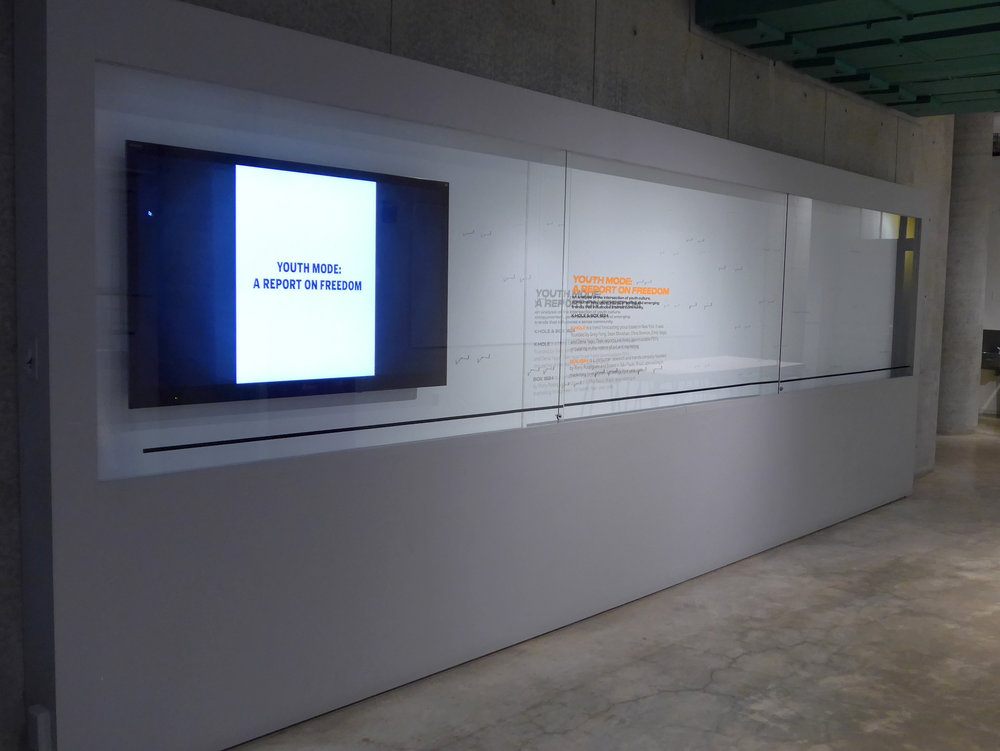 Installation view: K-Hole & Box 1824: YOUTH MODE: A REPORT ON FREEDOM  (2014).