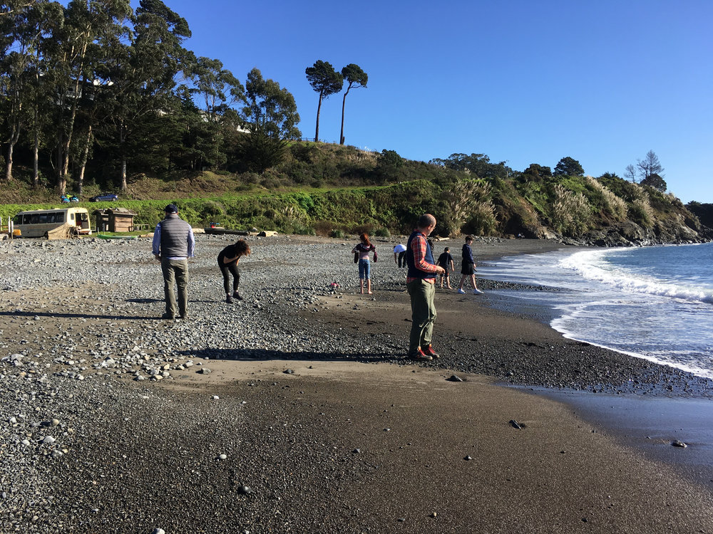 Companion Planting: A Prologue , Big River Beach, Mendocino, California, Saturday, February 3, 2018.