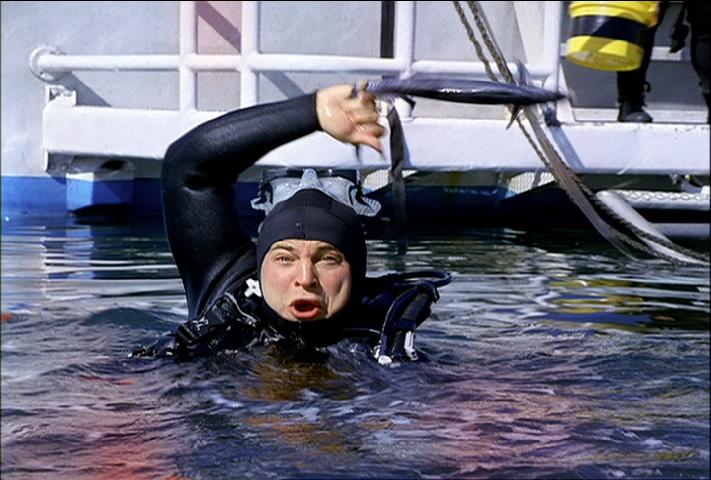 slingbox - sharkbite.jpg